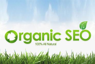 سئو ارگانیک چیست؟